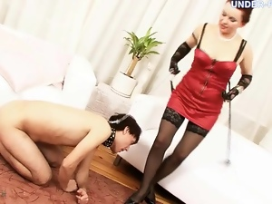 Leashed up guy eats out pussy of a mistress