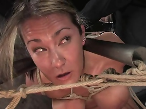 Sassy siren Trina Michaels gets trapped in a yoke bar