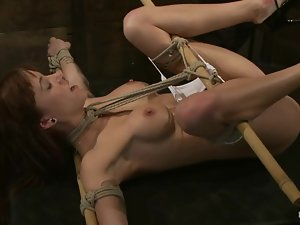 Two huge things penetrate her twat and ass in bondage