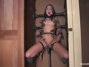 Dakoda Brookes and Eve Lei enjoy being tormented in hot BDSM clip
