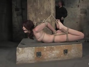 Stunning Faith Leon gets humiliated in hot BDSM video