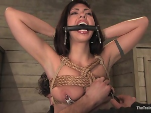 Hard breast bondage and a wild doggy style for Satine