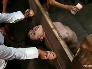 Brunette gets hogtied and abused in front of the public