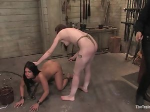Two lovely girls suck a cock and gets humiliated