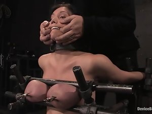 Claire Dames gets her boobs pressed and her snatch toyed