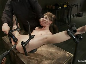 Isis Love smashes Sensi Pearl's sweet holes in astonishing BDSM vid