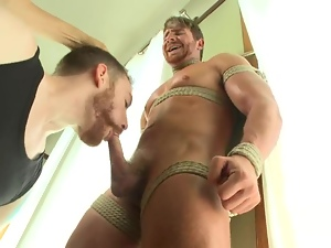 Gay BDSM compilation with only weirdest fags