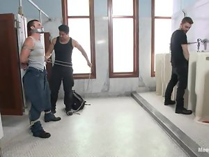 Tied up Axel Flint gets fingered by other dudes in a bathroom