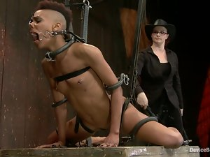 Nikki Darling gets her holes toyed hard in a stunning BDSM clip