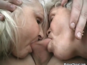 Nice cock licking by two horny grandmas