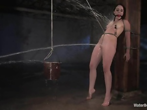 Brunette Alexa gets hogtied and tortured hard