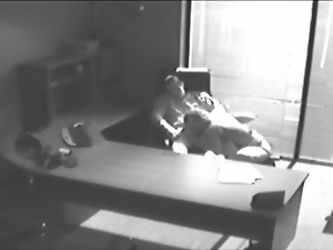Office lovers caught on spycam