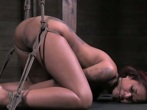 Skin diamond tied and tortured