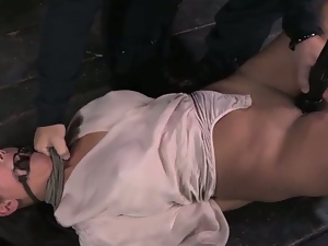 Bdsm style of hardcore sexing with busty chicks