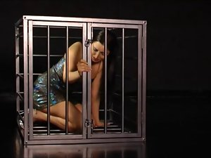 chick strips in a cage