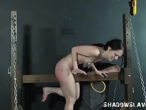 Kamis seductive teen electro bdsm and screaming device bondage