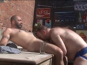 Hirsute Bears Outdoors
