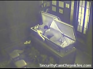 Attractive Sensual Caught On Security Camera